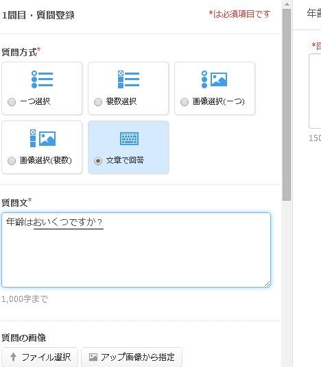 2.質問登録フォームの様子